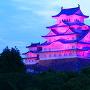 紫ライトアップを東御屋敷跡公園から