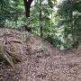 三の木戸堀切(竪堀)