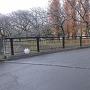 堀とされた善福寺川にかかる屋倉橋