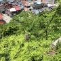 櫓台北の段丘崖にある竪堀