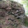 主郭の石垣を横から
