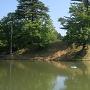 堀越し本丸土塁(南東側から)