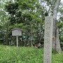 信長陣跡の石碑