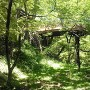 緑の空堀に浮かび上がる桜雲橋