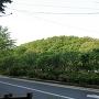 赤塚城全景