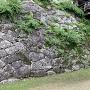 天秤櫓台石垣(切込み積みと、打ち込み積み境)