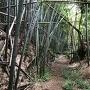 堀跡と思われる登城路