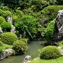 龍潭寺 池泉鑑賞式庭園