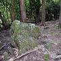 二の丸跡 (金山神社)