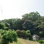 衣笠城遠景