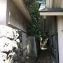 神社裏の土塁