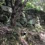 登城路沿いの石垣