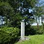 城址碑と戦国政宗桜