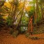 紅葉の日野城趾