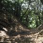 金ケ崎城 堀切(二の木戸付近)