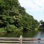 本丸西河からの石垣