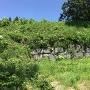 南西虎口の石垣