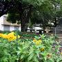 槙島城記念碑 (槇島公園)
