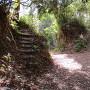 二の丸・主郭へ登る階段と間の堀切