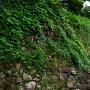 本丸豊原門の下あたりの古い石垣