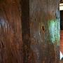 釿(ちょうな)の跡が残る天守の古い柱