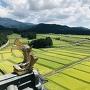 勝山城博物館からの眺望(南側 鯱と田園)