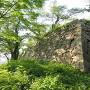 本丸石垣(南東隅)
