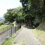 遊歩道からの城跡の眺め