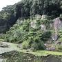 内堀と自然石
