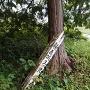 朽ちた追手門の標柱