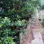 妙見神社の社殿後方にある石垣