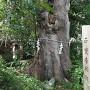 旭神社に建つ石碑
