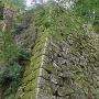 天守台と本丸石垣