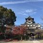 秋の犬山城