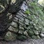 南の丸隅櫓跡の石垣