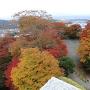 本丸東櫓台からの紅葉
