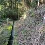 林道から弓型砲座へ