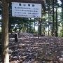 林道から本丸