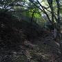 五の曲輪と外側土塁の間の横堀