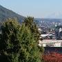 模擬天守から見える富士山