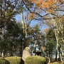 石碑と一曲輪櫓門