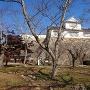 備中櫓と石垣(南側二の丸から)