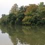 池の端濠越しの本丸土塁