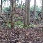 英林塚からの登城道との合流点の曲輪