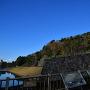 鯉喉櫓台からの城址全景