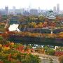 紅葉と壮大な石垣を、クリスタルタワーから