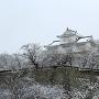 冬の備中櫓[提供:津山市観光協会]