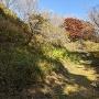 四季と紅葉をセットに訪れて!