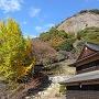 秋の岩殿山[提供:大月市観光協会]