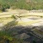 朝倉義景館跡の全景